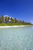 海滩热带的马尔代夫 库存照片