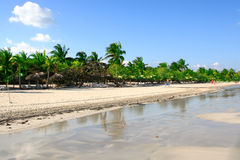 海滩热带通知 库存图片