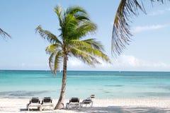 海滩玛雅人墨西哥里维埃拉 免版税库存图片