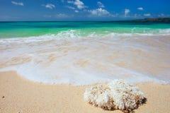 海滩理想热带 免版税库存图片
