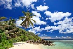 海滩理想的塞舌尔群岛 库存照片