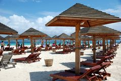 海滩瓷木萨尼亚的伞 库存图片