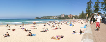 海滩男子气概的全景 免版税库存图片