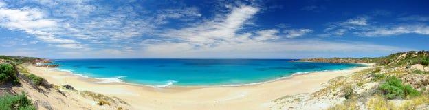 海滩男管家 库存照片