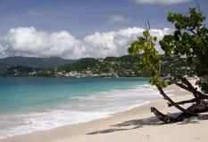 海滩白色 库存图片