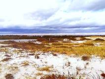 海滩的公园 库存图片