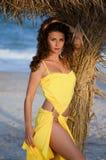 海滩的性感的少妇 免版税库存图片
