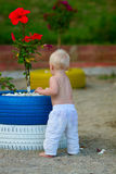 海滩的白肤金发的婴孩与木槿 图库摄影