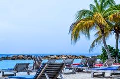 海滩睡椅和棕榈树由海 库存照片