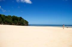 海滩离开的走 免版税库存照片