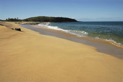 海滩秀丽夏威夷人 库存图片