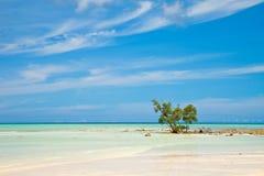 海滩空的havelock海岛 免版税库存图片