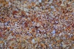 海滩纹理 免版税库存图片
