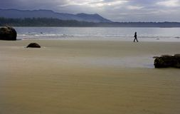 海滩结构 免版税库存照片