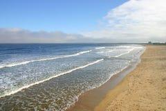 海滩缅因老果树园 库存图片