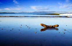 海滩美丽的新的场面taipa西兰 库存照片