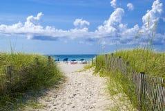 海滩美丽的迈阿密 免版税库存照片