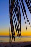 海滩美好的日落 免版税库存图片