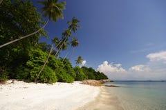 海滩美好的热带白色 库存图片