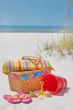 海滩美好的野餐 免版税库存图片