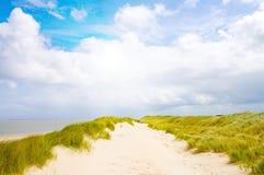 海滩美好的阳光 免版税库存照片