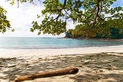 海滩肋前缘前面rica 免版税图库摄影