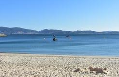 海滩背景:在一个海湾的海滩与城堡由沙子制成 明亮的沙子,清楚的水,天空蔚蓝 好日子,Sanxexo,加利西亚,西班牙 免版税图库摄影