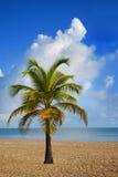 海滩胜地在San Juan (波多里哥) 免版税库存图片