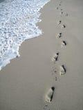 海滩脚步 免版税图库摄影