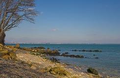 海滩自然小卵石 图库摄影