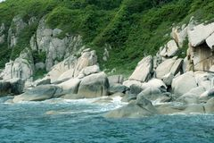 海滩自由其它 免版税库存图片