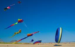 海滩节日风筝 库存图片