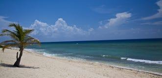 海滩英里七 免版税库存照片