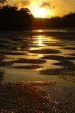 海滩著名日落 免版税库存图片