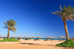 海滩蓝天伞 库存照片