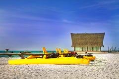 海滩蓝色椰子横卧天空结构树 库存照片