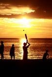 海滩蟋蟀 免版税图库摄影