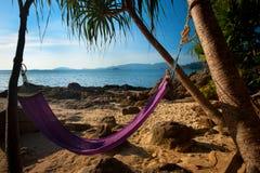 海滩被隔离的吊床密林 免版税库存图片