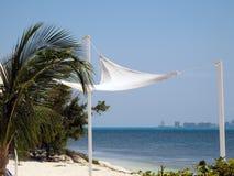 海滩装饰 库存图片