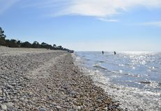海滩贝加尔湖 免版税库存图片