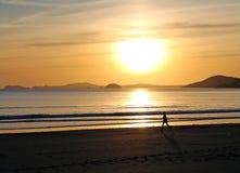 海滩赛跑者和日落 免版税库存图片