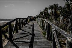 海滩走道 免版税库存图片