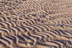 海滩起波纹沙子 免版税库存照片