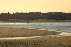 海滩起重机田园诗风景 免版税库存图片