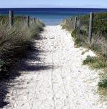 海滩路径含沙 免版税库存图片