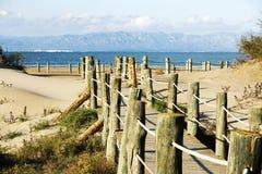 海滩路径 免版税库存图片