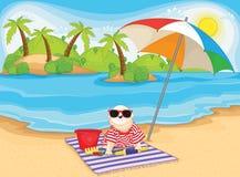 海滩逗人喜爱的狗开会 免版税库存图片