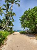 海滩通入 免版税库存照片