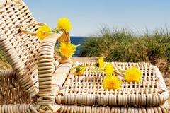 海滩野餐 免版税库存图片
