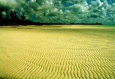 海滩金岩石 库存图片